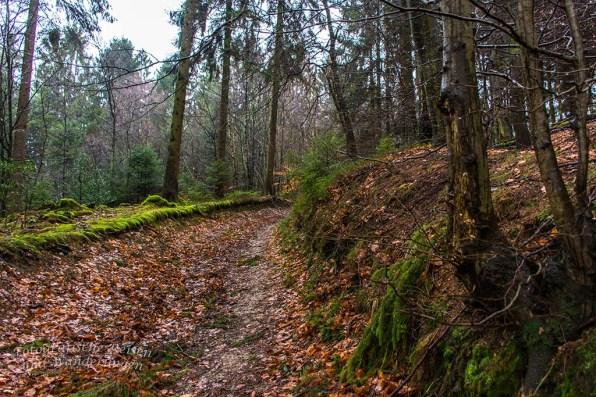 Pilgerpfad und Heerweg (56)