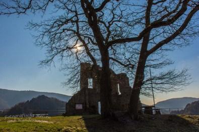 Aussichten und eine Burgruine an der Ahr (140)