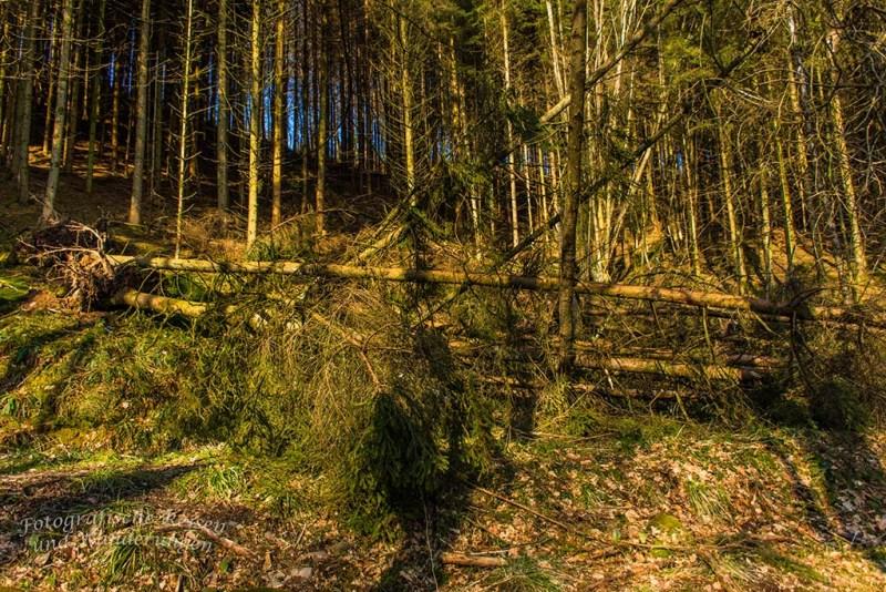 Berg_und_Tal_Schöllerhof (14)