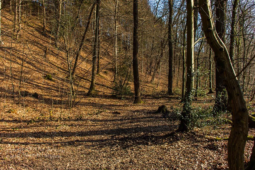 Berg_und_Tal_Schöllerhof (6)