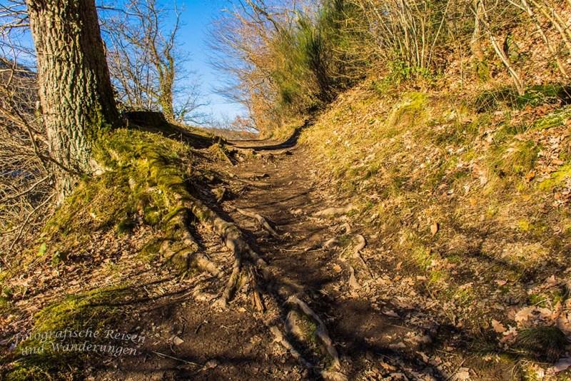Heimbach und Dschungelpfad (44)