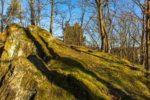 Heimbach und Dschungelpfad (94)