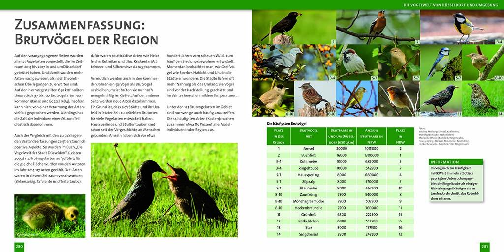 Vogelwelt von Düsseldorf S.280-281