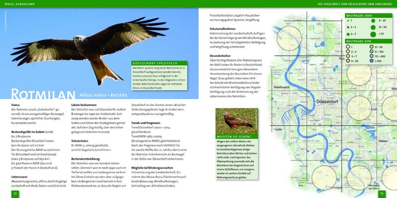 Vogelwelt von Düsseldorf S.72-73