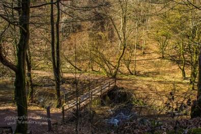Die Brücke über den Eifgenbach- eine der Brücken