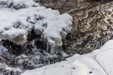 Winter am Eifgenbach (102)