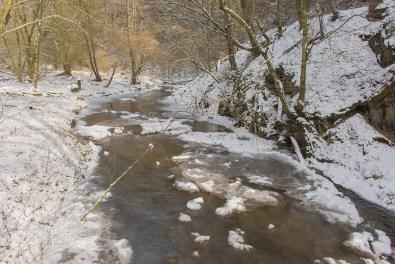 Winter am Eifgenbach (133)