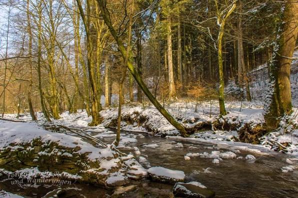 Winter am Eifgenbach (137)