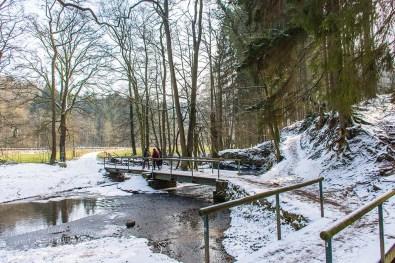 Winter am Eifgenbach (153)