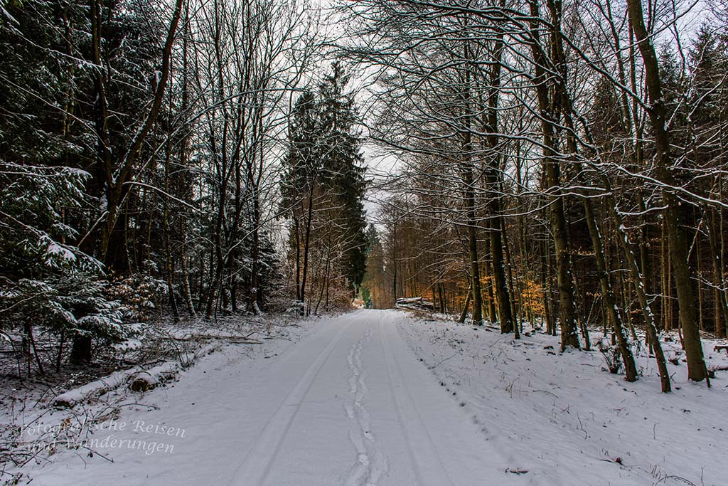 Winter am Eifgenbach (26)