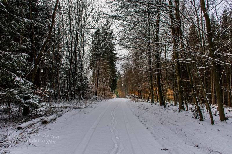 Winter am Eifgenbach (26)