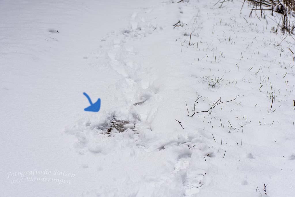 Winter am Eifgenbach (37)