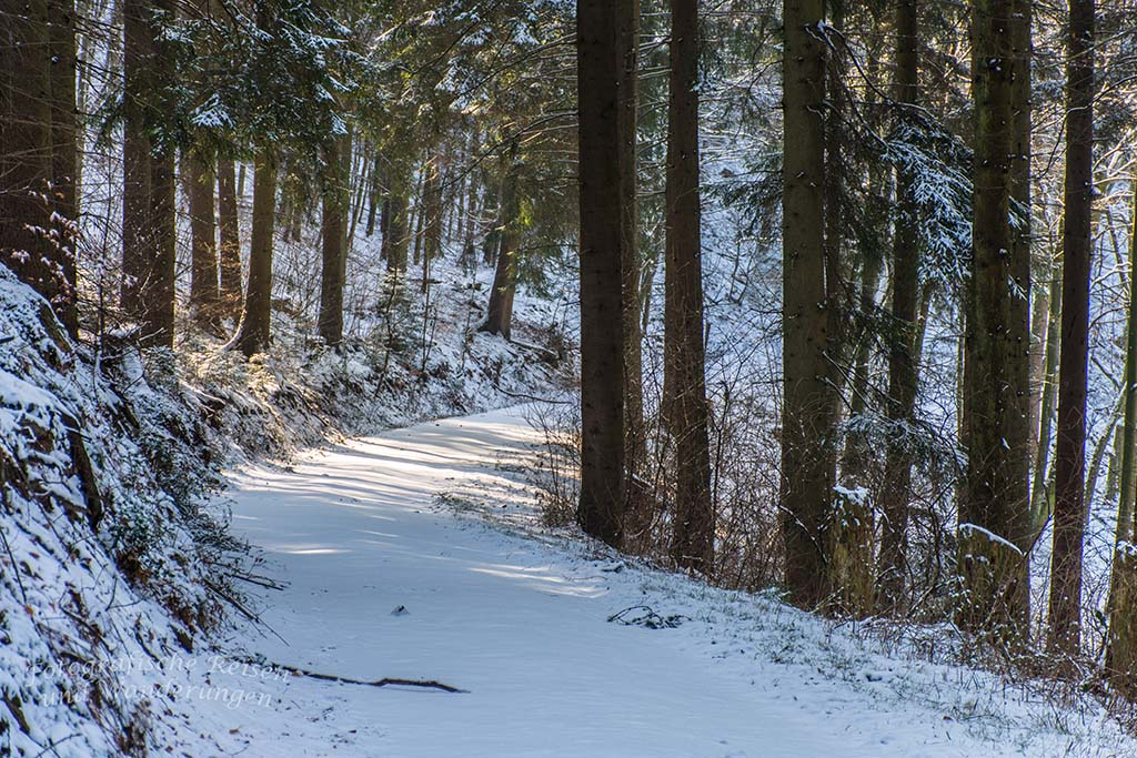 Winter am Eifgenbach (63)