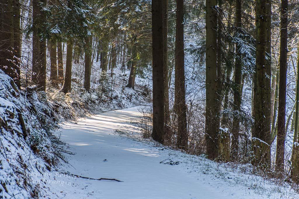Winter am Eifgenbach (63)