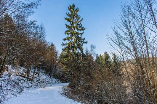 Ein Höhenweg oberhalb Gut Luchtenberg