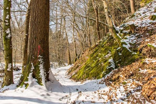 Winter am Eifgenbach (81)
