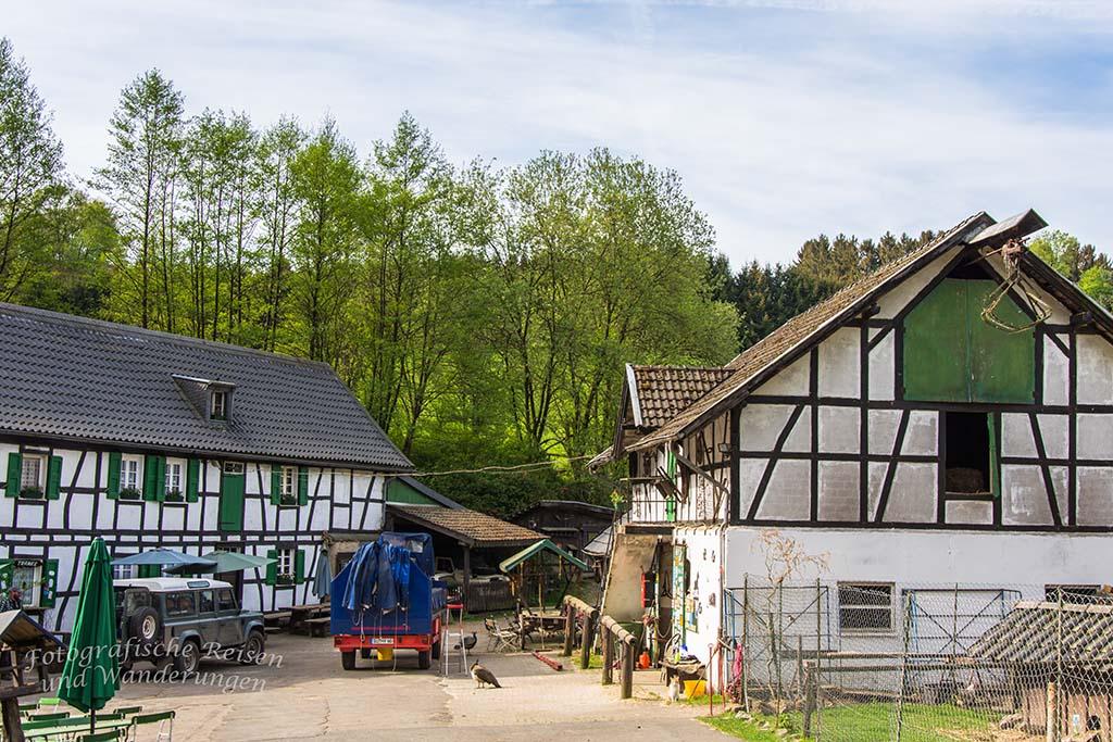 BergischerStreifzugBauernhofweg (37)