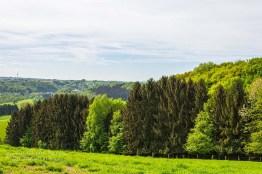 BergischerStreifzugBauernhofweg (98)