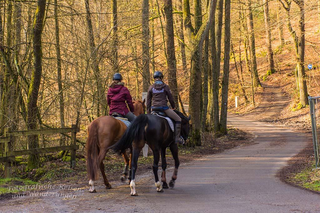 Reiter im Gelpetal-Gelpetal und Ronsdorfer Talsperre