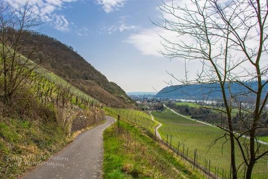 Rheinsteig Rheinbrohl nach Leutesdorf (94)