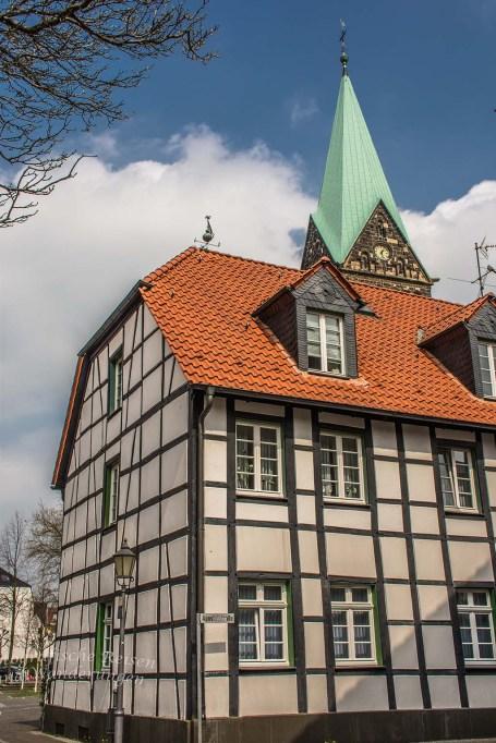 Westerholt Schloss und Wald (217)