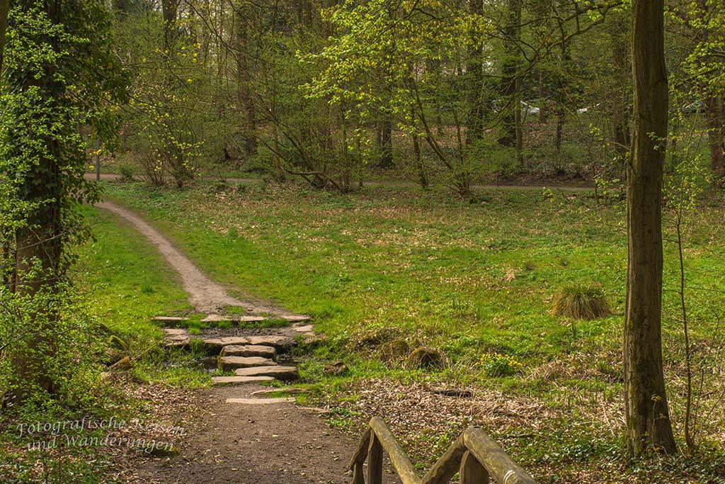 Westerholt Schloss und Wald (76)