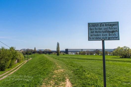 Zwischen Schloss Engers und Steinsee (103)