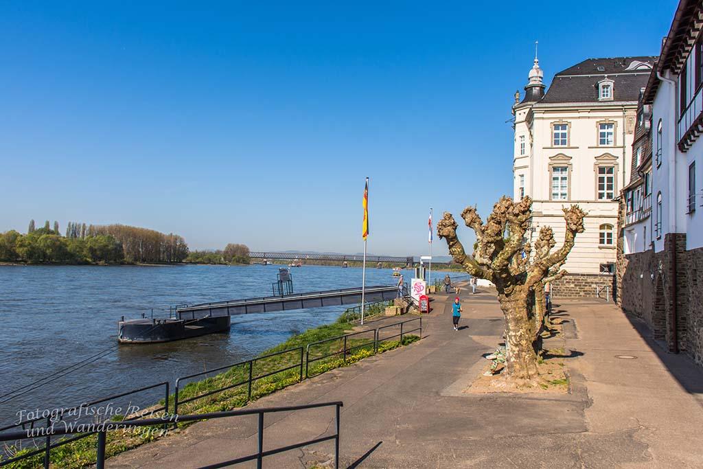 Schloss Engers und die Rheinpromenade Neuwied