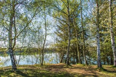 Zwischen Schloss Engers und Steinsee (86)