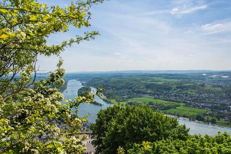 Wieder ein toller Blick auf den Rhein