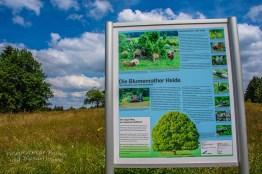 Schriftliches zur Flora und Fauna der Blumenrather Heide
