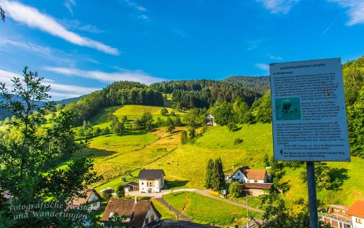 Genießerpfad Himmelssteig aus der Schwarzwälder Wandersinfonie