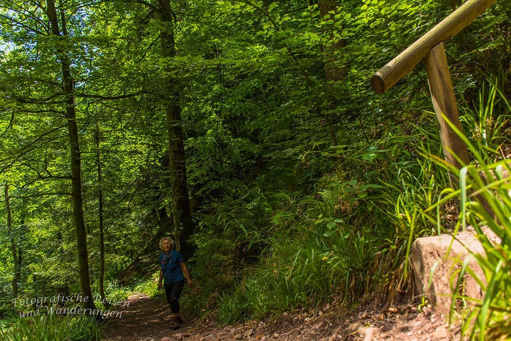 An der wilden Rench - Schwarzwälder Wandersinfonie
