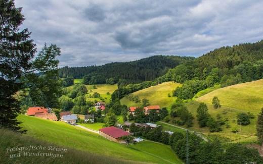 Schwarzwälder Wandersinfonien - Heute der Wiesensteig