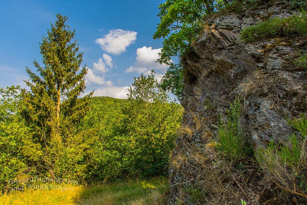 Wilde Wiesenwege in der Osteifel