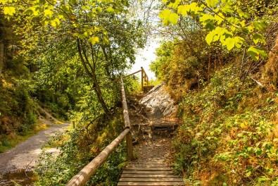 Hohes Venn_Wasserfall von Bayonne und Burg Reinhardstein (229)
