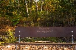 Wahner Heide - Eilerberg Tour (46)