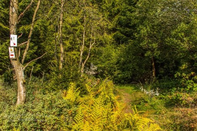 Genusstour Wildes Land _ Xhoffraix (19)