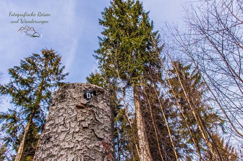 D1 Siefen, Wälder und Höhen (112)