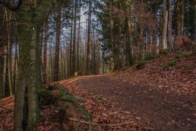 D1 Siefen, Wälder und Höhen (87)