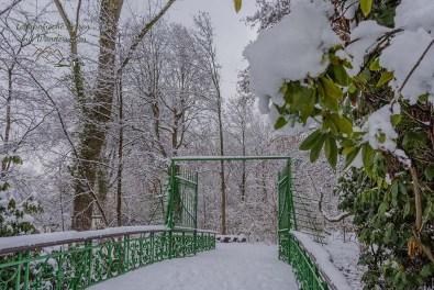 Über die Brücke und dann rechts in die Natur des Schlosspark Morsbroich