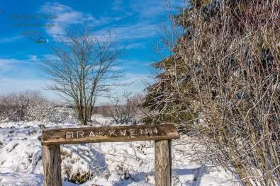Schneewanderung in Muetzenich (131)