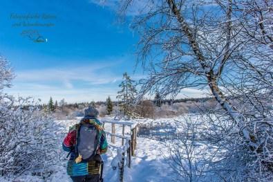Schneewanderung in Muetzenich (27)