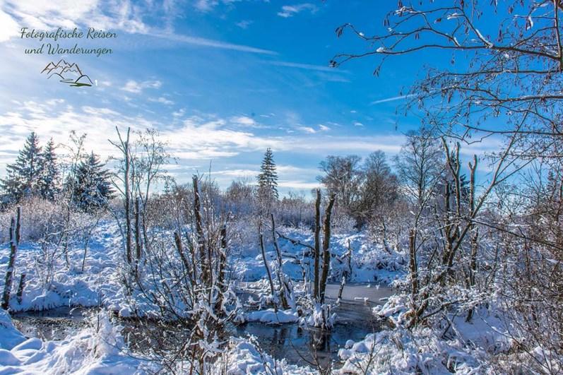 Schneewanderung in Muetzenich (39)