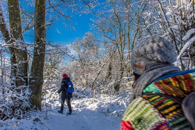 Schneewanderung in Muetzenich (43)