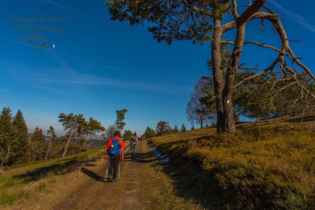 Rechts der Raßberg - Auf dem Bergheidenweg