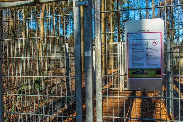 Wildschutzgitter als Zugang zum Diersfordter Wald