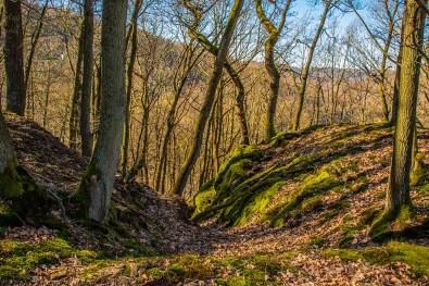 Hohlwege in der Eifel zwischen Wollseifen und der Uftstaumauer