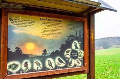 Vogelstimmen bestimmen, Informationstafel mit Klang