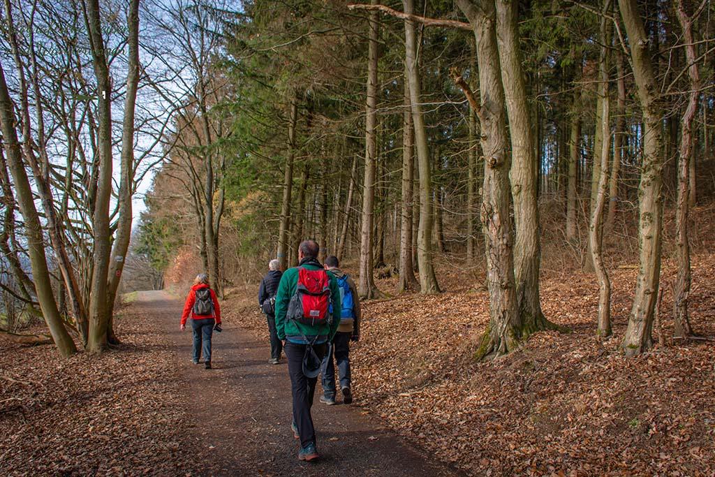 Schlendern über die Wege der Wäller Tour Elberthöhen